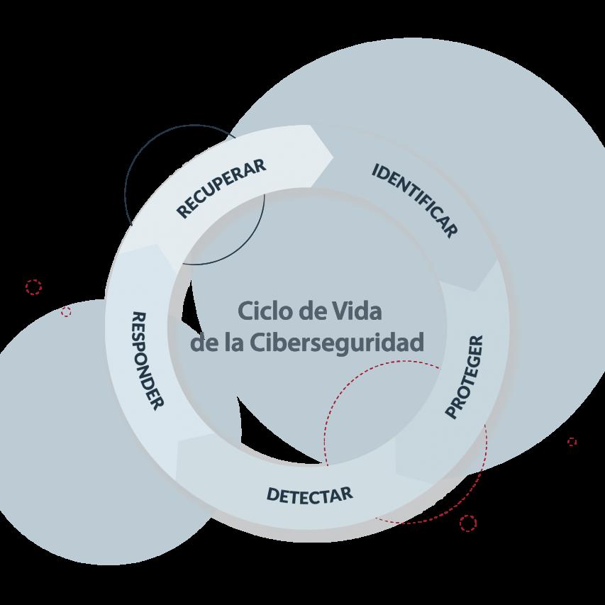 ciclo de vida de la ciberseguridad